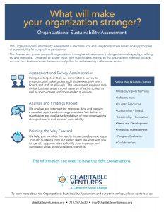 organization-sustainability-capacity-building